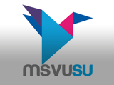 Mount Saint Vincent University Students' Union, MSVUSU